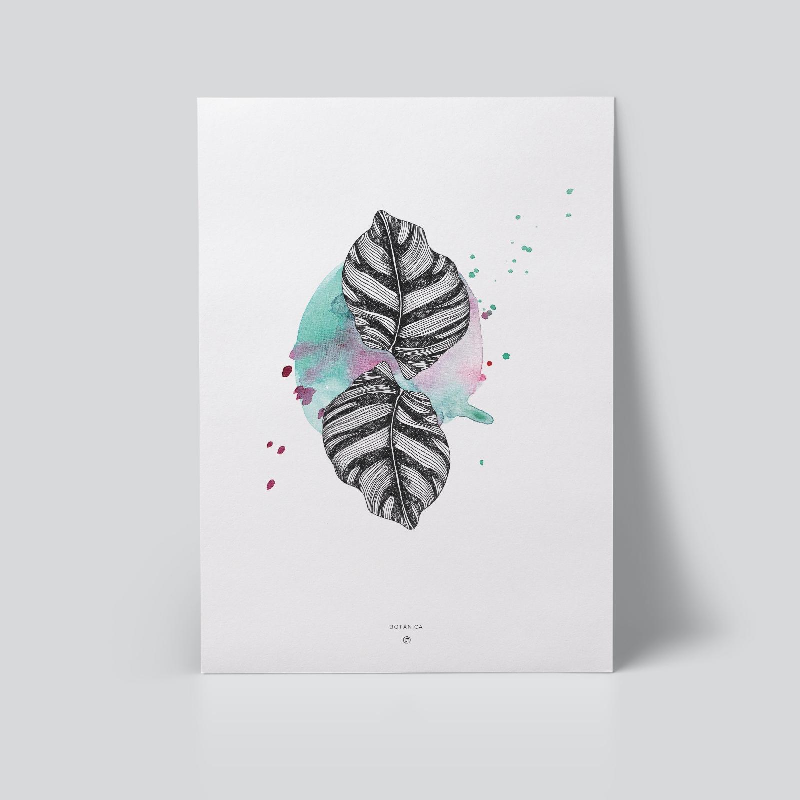 Zebra Leaf Plakat
